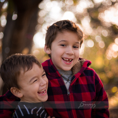 Brothers laughing in the sun during a houston outdoor family session